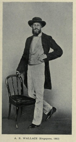 Wallace in Singapore, 1862.